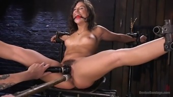fucked up weirdo immobilizes juicy abella danger and torments her hairy cunt