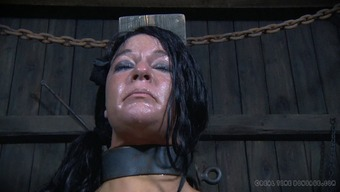 Kinky BDSM session featuring a raunchy brunette bimbo