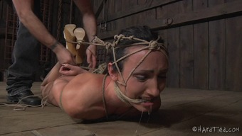 Scream as bondage babe pussy is teased using toys in BDSM