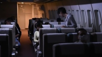 Sex in The Plane