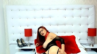 Curvy Brunette Strip And Show Off Live In Webcam