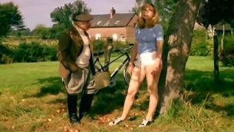 Les zizis en folie (1978)
