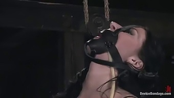 intense bdsm scene with submissive brunette chick